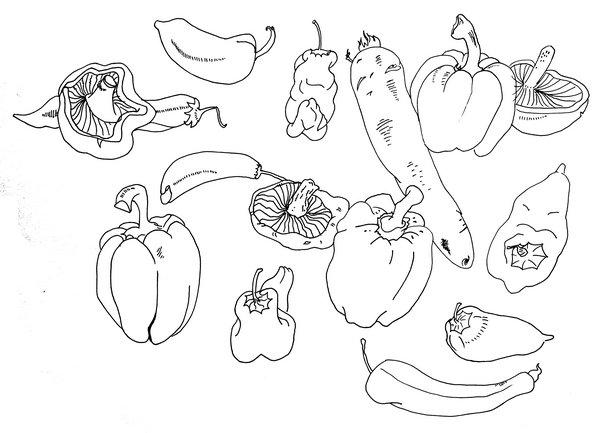 简笔画蔬菜图片大全步骤