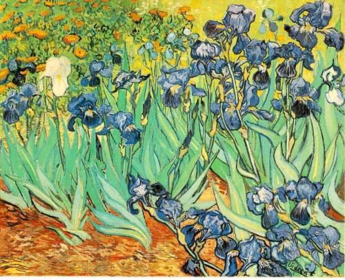 梵高世界名画欣赏 艺术收藏
