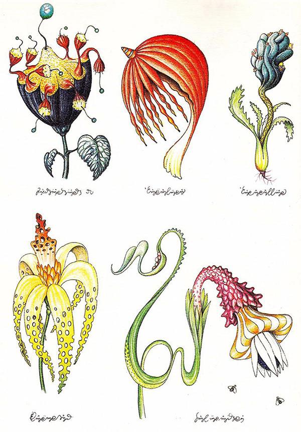 有着魔性外表的植物