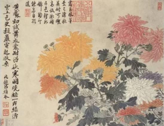 花中四君子指什么 赞美樱花的诗