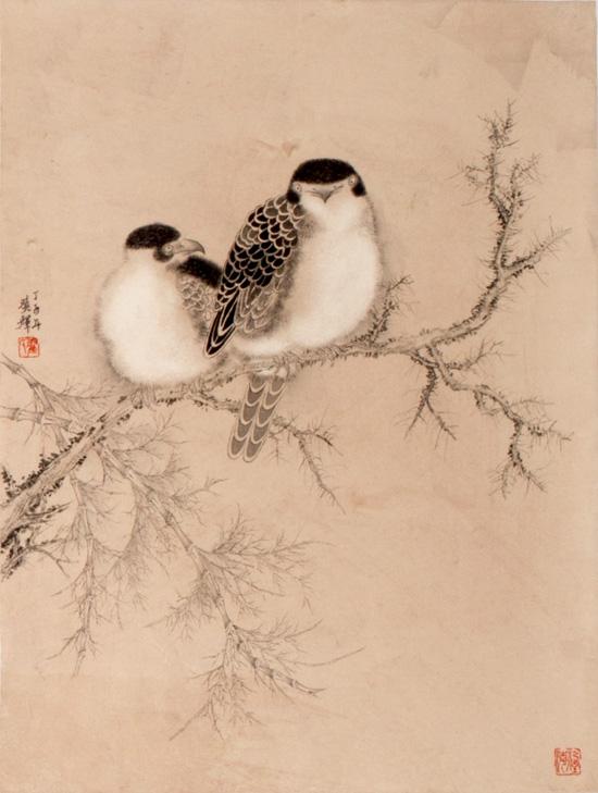 可爱的山雀怎么画