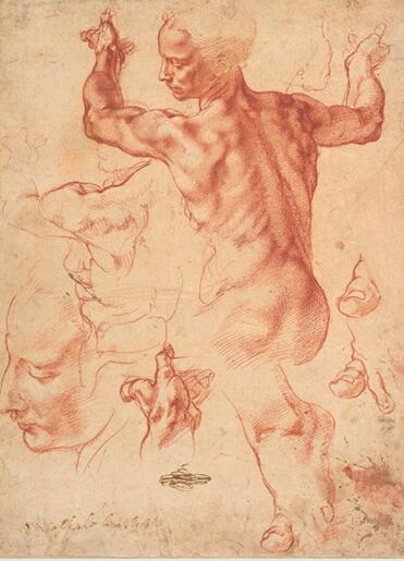 米开朗基罗 素描 28.9×21.4cm 粉笔 1510-1511年