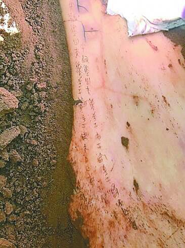 宁夏彭阳姚河塬商周遗址在考古发掘中出土甲骨文