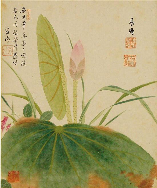 明 项圣谟 花卉图册之一